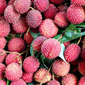 Lychee or litchi at fruit market — Стоковое фото