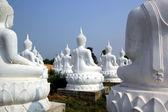 Buddha bild — Stockfoto