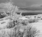 Bevroren boven denver — Stockfoto
