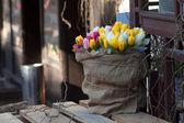 The original tulip bouquet — Stock Photo