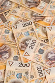 Money Polish Zloty — Stock Photo