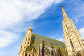St. Stephan cathedral in Vienna, Austria — Stock Photo