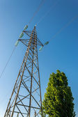 High-voltage electricity pylons, view from below — Foto Stock