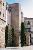 Some buildings in the Gothic quarter of Barcelona — Stock Photo
