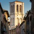 Bell tower of the Ferrara cathedral view from Mazzini street — Stock Photo #49850247