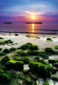 Sunrise by the sea in an italian beach — Foto de Stock