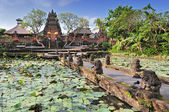 Gorgeus Pura Saraswati temple at the lovey village of Ubud. Bali, Indonesia — Stock fotografie