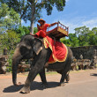 Elephant rides for tourists at Cambodia's most famous tourist attraction, the temple Angkor Wat in Siem Reap, Cambodia. — Foto Stock #44382999