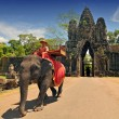 Elephant rides for tourists at Cambodia's most famous tourist attraction, the temple Angkor Wat in Siem Reap, Cambodia. — Foto Stock #44383005
