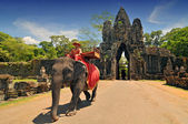 Elephant rides for tourists at Cambodia's most famous tourist attraction, the temple Angkor Wat in Siem Reap, Cambodia. — Stock Photo