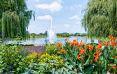 Chicago Botanic Garden — Stock Photo