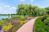 Chicago Botanic Garden — Stock Photo