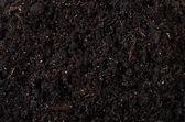 Black ground close up — Stock Photo
