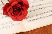 The rose on notebooks with notes — Stock Photo