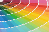 The color palette as a background — Stock Photo