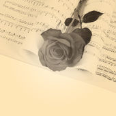 The rose on notebooks with notes — Foto de Stock
