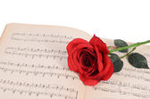 The rose on notebooks with notes — Foto Stock
