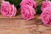 De mooie roze steeg een achtergrond — Stockfoto