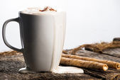 Cup of Hot cocoa — Stockfoto