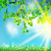 Naturaleza eco / verde y azul con luz del sol. — Vector de stock