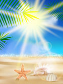 Day with sand, shells and palm leaves. — Stock Vector