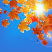 青い空のまぶしさと繊細な秋の太陽. — ストックベクタ