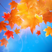 Delicate autumn sun with glare on blue sky. — 图库矢量图片