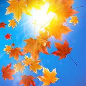 Delicate autumn sun with glare on blue sky. — Stock vektor