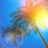 Palm trees and sun in sky. — Stock Vector