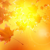 Delicate autumn sun with glare on gold sky. — Stock Vector