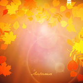 Autumn Colorful red and yellow leaves. — Stock Vector