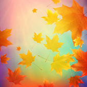 Beautiful autumn Leaves. — Stock vektor