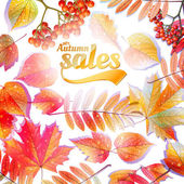 Autumn Calligraphy sale on detailed leafs. — Stock Vector