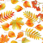 Swatch ready detailed seamless wet leaves. — Vetorial Stock