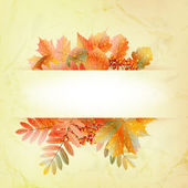 Autumn abstract background with colorful leafs. — Stock Vector