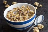 Crunchy nut clusters — Stock Photo