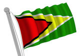 Guyana Flag On Pole — Stock Photo