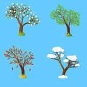 Four seasons tree. — Stock Vector