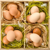 Eggs in wooden box — Stock Photo