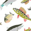 Cool Fish — Stock Vector