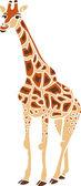 Cool Giraffe — Stock vektor