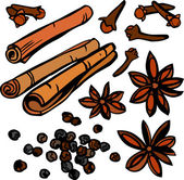 Cool Spices Set — Stock Vector