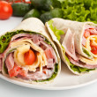 Wrapped tortilla sandwich rolls — Stock Photo #41982815