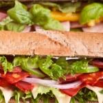 Постер, плакат: Long whole wheat baguette sandwich
