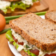Egg salad sandwiches on brown and white toasted bread — Stock Photo #41987063