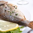 Sea Bream fish with vegetables on a white plate — 图库照片
