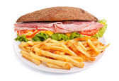 Whole wheat stuffed sandwich with fries — 图库照片