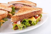 Cheese and meat sandwich — Foto Stock