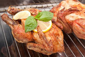Two whole roasted chickens — Stock Photo