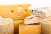 Various types of cheese — Foto de Stock